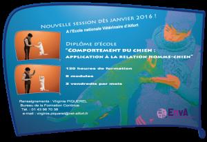 V2a1_Form2016_ComportementChien-219-151